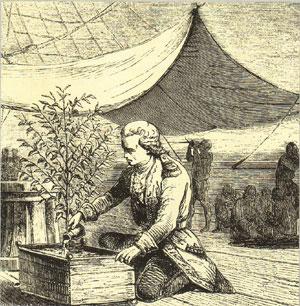 Габриэль де Клё фото