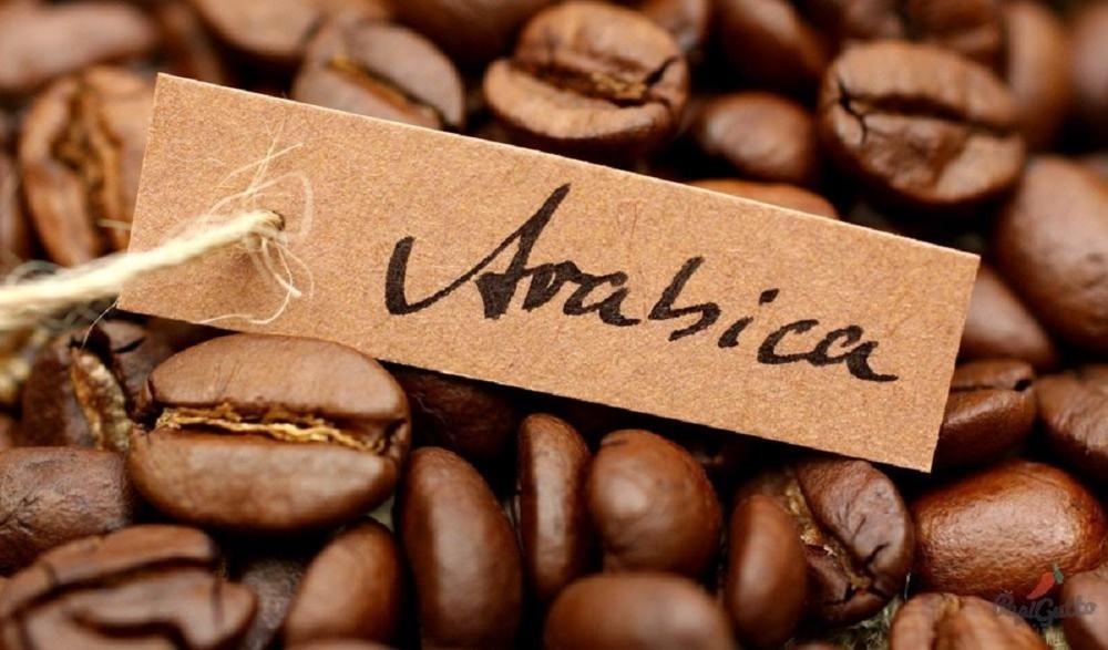 как выбрать сорт кофе для турки