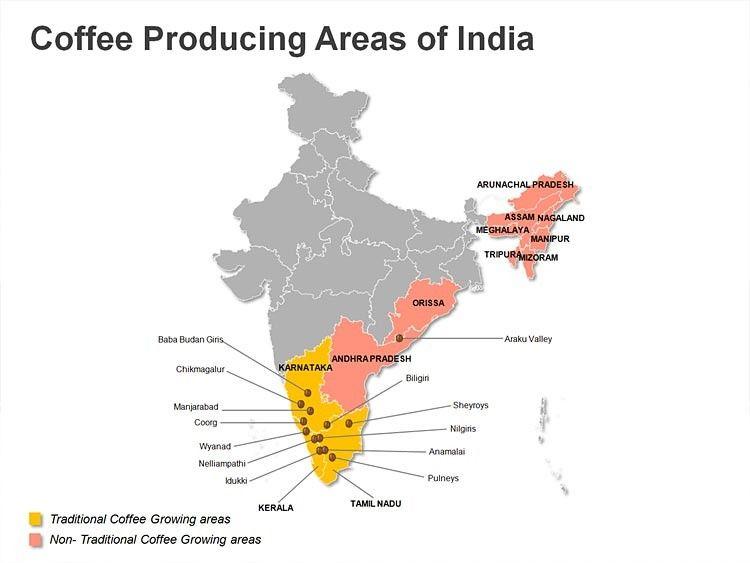 фото регионов производства индийского кофе
