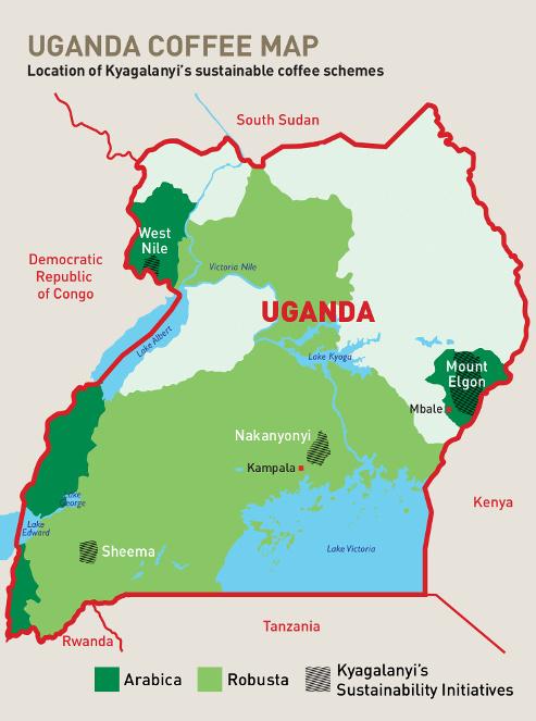карта регионов выращивания кофе в Уганде