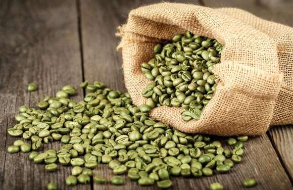 фото зеленых кофейных зерен из Уганды