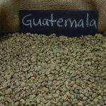 фото зерен гватемальского кофе