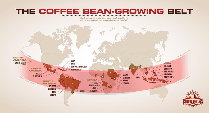 фото кофейного пояса Земли