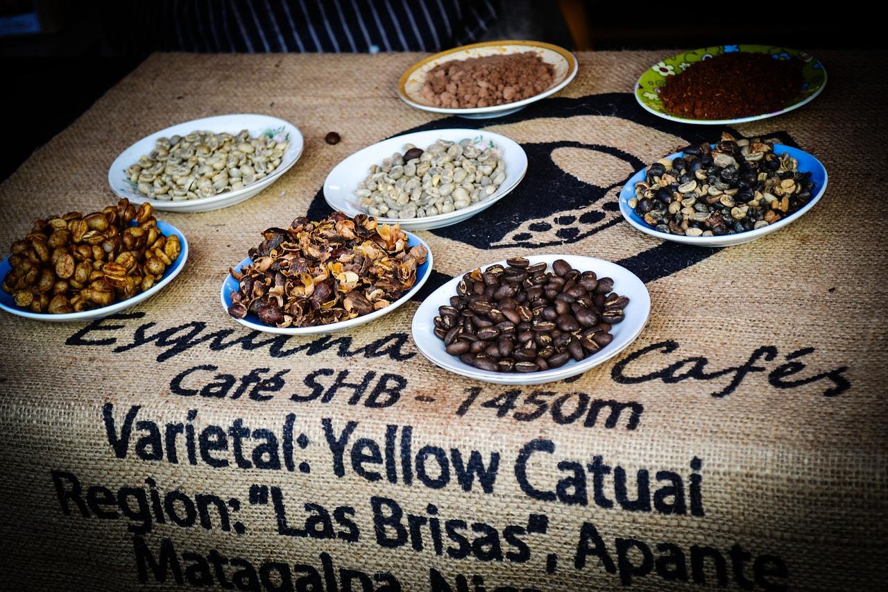 фото видов и сортов никарагуанского кофе