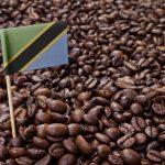 какой танзанийский кофе лучше