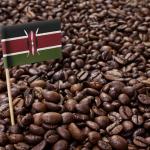 какой кофе в Кении лучший