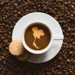 какой кофе в Таиланде самый лучший