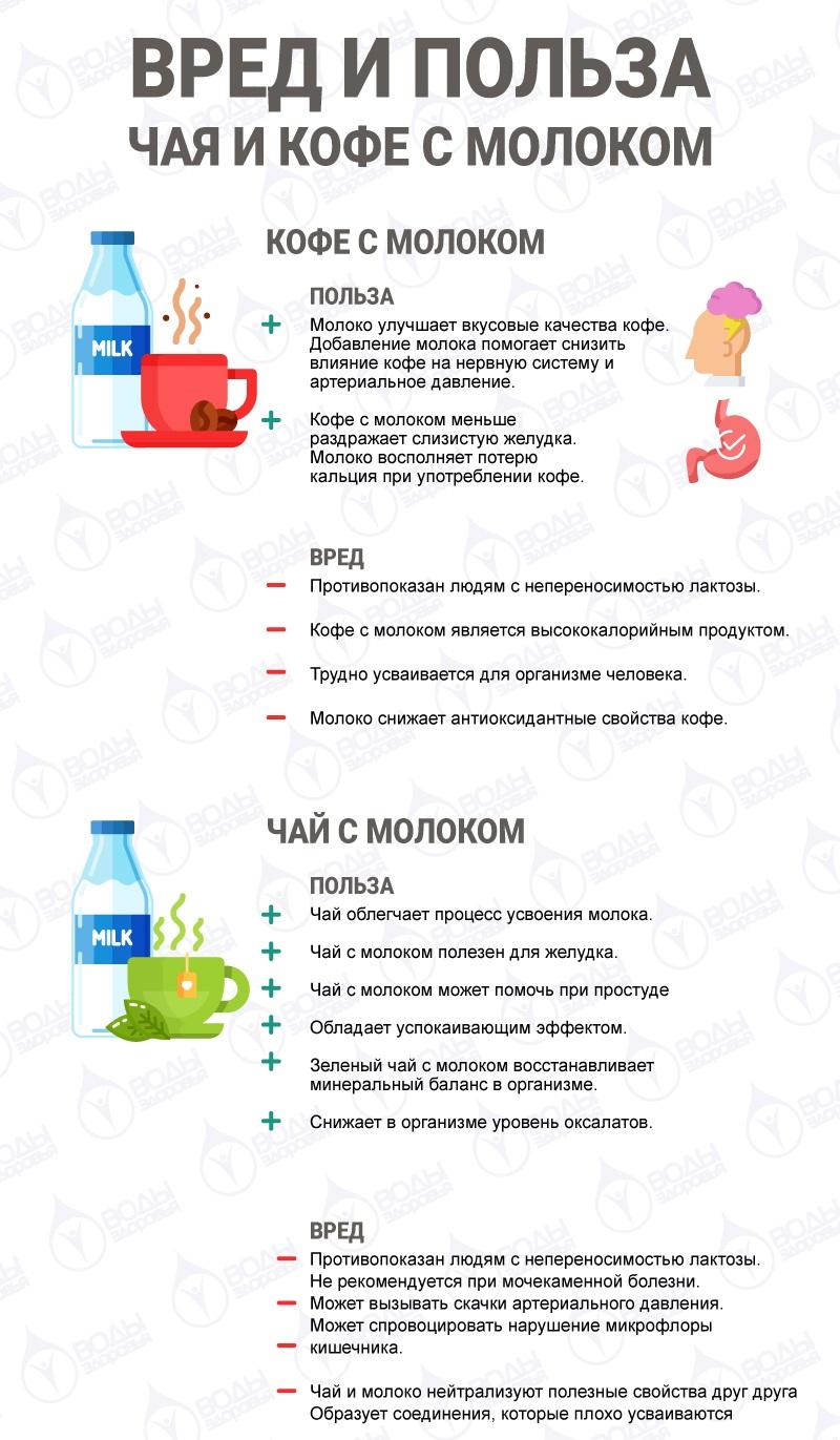 инфографика о вреде и пользе пития чая и кофе с молоком