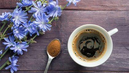 как пить цикорий вместо кофе