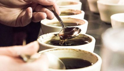 фото профессиональной дегустации кофе