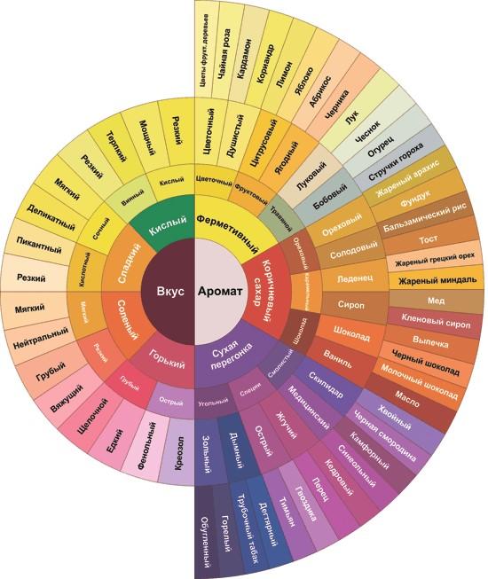 Совмещённое колесо вкусов и ароматов фото