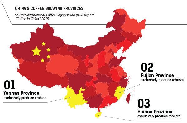 карта производства кофе в Китае