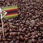 какой кофе из Зимбабве