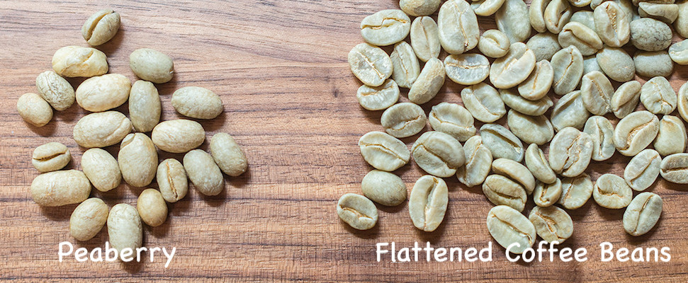 какая разница между пиберри и обычным кофе