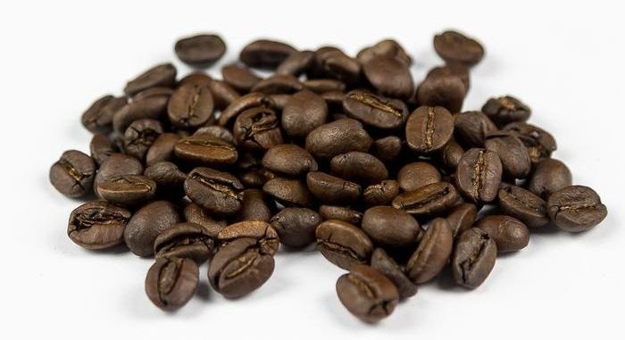фото кофейных зерен Катуаи
