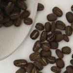 фото кофе арабика пакамара