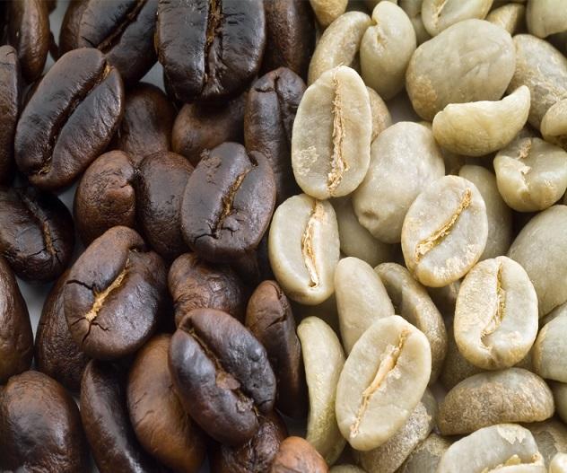 фото зерен кофе Катурра