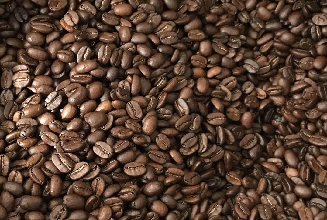 фото зерен кофе катимор