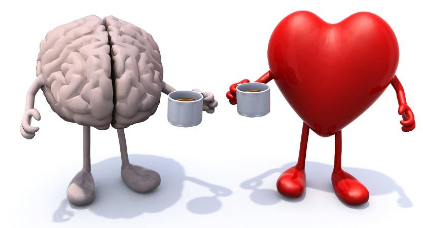 чем полезен кофе для сердца и мозга
